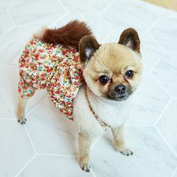 강아지옷 편안한 올인원  화이트 플라워 레이스