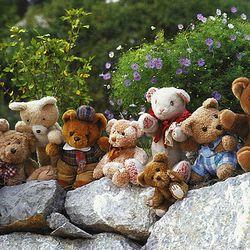 500조각 직소퍼즐 - 곰 가족의 나들이 (CA5066A)