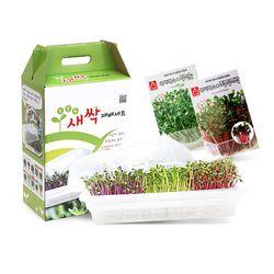 새싹 재배기 세트