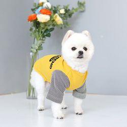 패리스독 강아지옷 트렌드 티셔츠