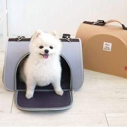 패리스독 강아지가방 레터링 돔 캐리어
