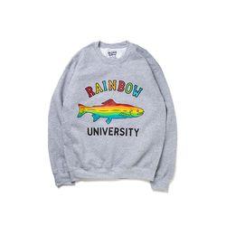 Rainbow university MTM