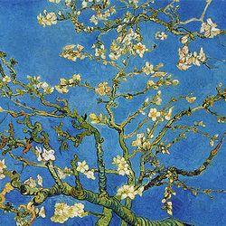 500조각 직소퍼즐 - 꽃이 핀 아몬드 나무의 가지들 (CA5099A)