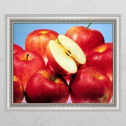 ck813-싱그러운빨간사과창문그림액자