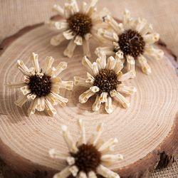 말린 흰 꽃 모형(5개)