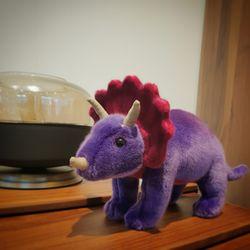 Tillandsia purple Triceratops - 틸란지아퍼플 트리케라톱스
