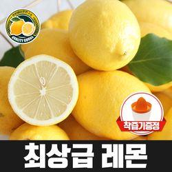 미국칠레 팬시 레몬대과 10입 개당100g