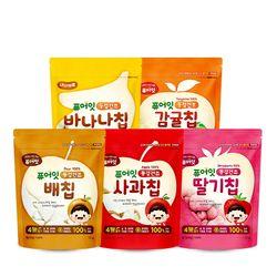 내이브로 퓨어잇 아기과자 과일칩 4종