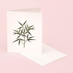 BOTANICAL SCENTED CARD BAMBOO