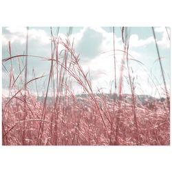 핑크뮬리 인테리어포스터 (A4)