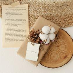 목화 솔방울 레드베리 막대과자선물set