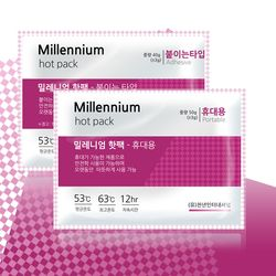 밀레니엄 휴대용핫팩 (50g x100매)