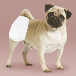 아몬스 정품 애견 강아지기저귀 수컷초소형 소형 중형