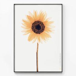 메탈 식물 꽃 그림 포스터 액자 해바라기 [대형]