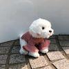 강아지 러플 핑크 니트