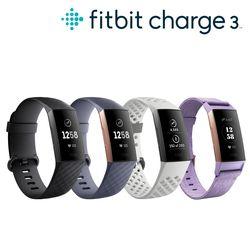 Fitbit Charge3 핏비트 차지3 스마트밴드 SE