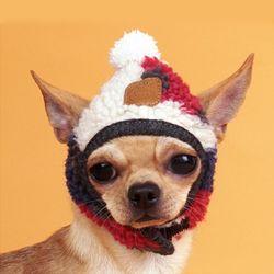 강아지옷 까무 모자