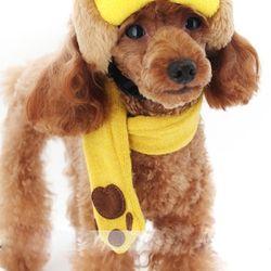강아지옷 발바닥 목도리