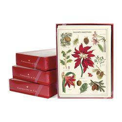 Cavallini 크리스마스 카드세트 Christmas Botanica