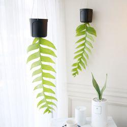 크리소카디움 공기정화식물 행잉 플랜트