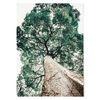 중형 패브릭 포스터 F184 식물 풍경 인테리어 액자 나무 ver.2