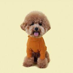 Cozy Turtleneck T-Shirt 코지 터틀넥 티셔츠 Orange