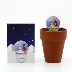 크리스마스 씨앗카드 스노우볼