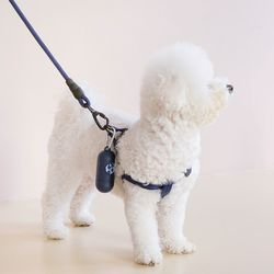 강아지 배변 봉투/케이스 세트 블루