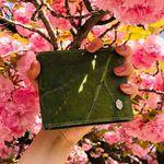 잎섬유 신분증 반지갑