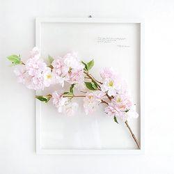 보타니컬 입체액자-벚꽃 40x50cm