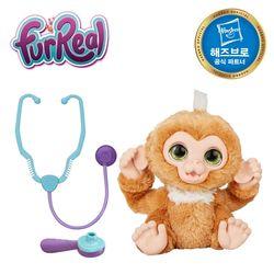 퍼리얼 닥터 원숭이