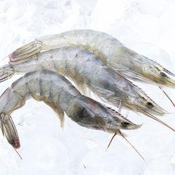 흰다리새우 40미(소) 500g