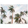 중형 패브릭 포스터 F250 인테리어 풍경 식물 액자 야자수 바람