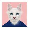 중형 패브릭 포스터 S067 인테리어 그림 액자 동물 친구 고양이