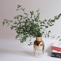 파블로 유칼립투스 인테리어 공기정화식물 소품
