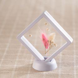 프리저브드 투명 액자(소-라그라스)