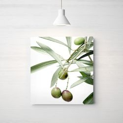 인테리어 그림 식물 포스터 올리브 중형