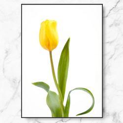 인테리어 그림 식물 포스터 튤립 중형
