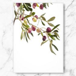 인테리어 그림 식물 포스터 행잉 올리브 중형