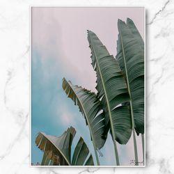 인테리어 그림 식물 포스터 바나나 리프 중형