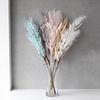 아트 깃털 가지 - 5color