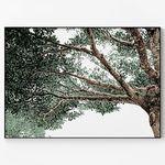 메탈 인테리어 포스터 식물 풍경 사진 액자 나무 그늘 D [대형]