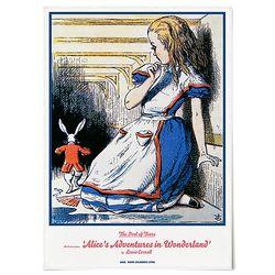 중형 패브릭 포스터 F254 그림 천 액자 이상한 나라의 앨리스 A