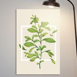 cq019-심플한식물중형노프레임
