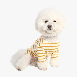 모던 스트라이프 티셔츠 (옐로우) 2XL3XL