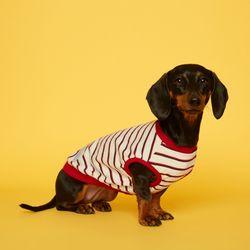 강아지옷 민소매 스트라이프 티셔츠 - 아이보리레드