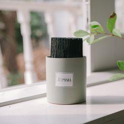 우리집 공기지킴이 그린 숯화분-공기정화 미세먼지제거 습도조절