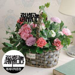 [쇼핑백+메세지픽]멘디에타 카네이션 비누꽃 바구니