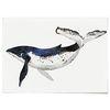 중형 패브릭 포스터 F053 동물 그림 아기방 액자 고래 ver2