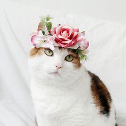 고양이 강아지 핑크로즈 화관 꽃 머리띠 옷 모자 Miyopet- 핑크